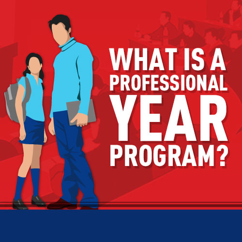 Professional Year Program